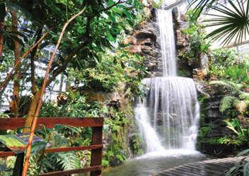 Le jardin botanique de la reine sirikit chiang mai for Jardin botanique ouverture 2015