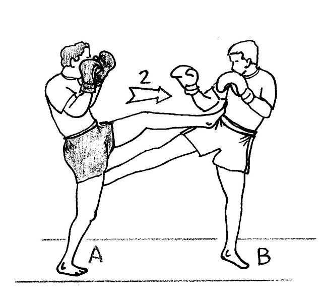Thai Kick Boxe formation Martiale tampon de boxe Bouclier Sparring E8F7 67