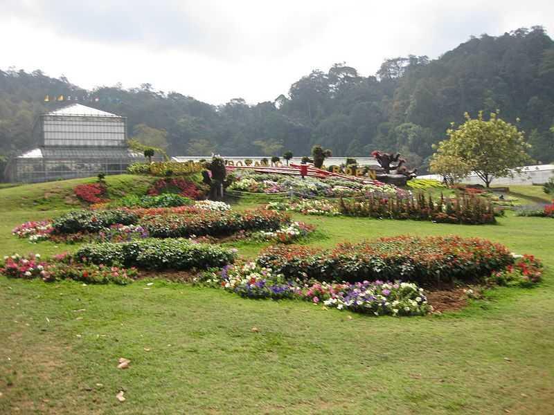 Le jardin botanique de la reine sirikit chiang mai for Jardin botanique hiver 2015